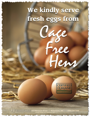 Cage Free Hens Poster