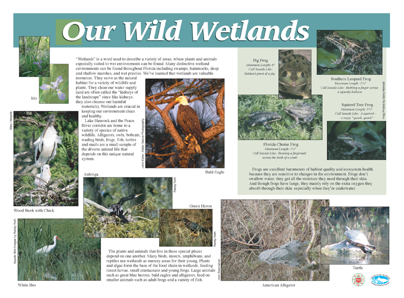 WetlandsPanel