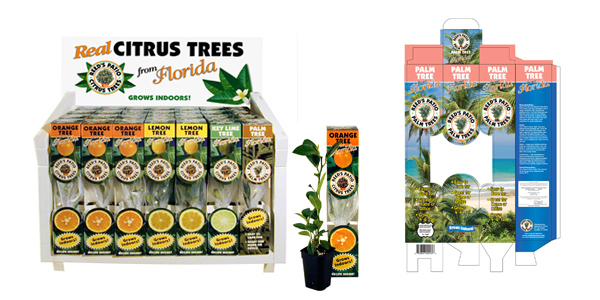 Real Citrus Trees